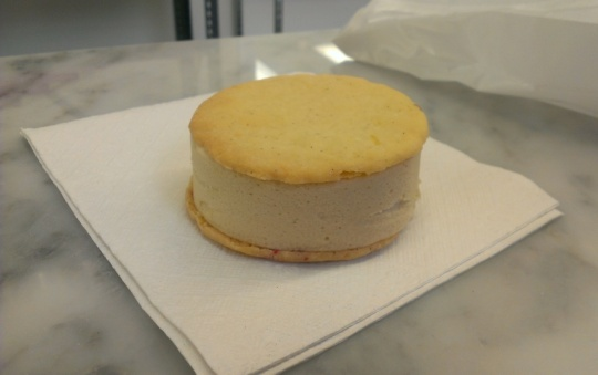 Beta 5 Ice Cream Sandwich